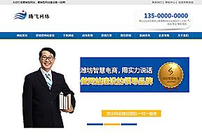 蓝色网络营销企业